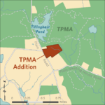 A 28 ACRE tract of land near Tillinghast Pond in West Greenwich has been purchased by The Nature Conservancy. The acquisition was funded by the DEM and the U.S. Fish and Wildlife Service. / COURTESY R.I. DEPARTMENT OF ENVIRONMENTAL MANAGEMENT
