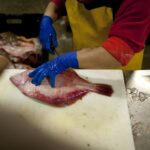 NEW YORK has sued the U.S. Department of Commerce to get the right to fish for a greater share of fluke. The state's argument includes changes to fish stocks due to climate change. / BLOOMBERG NEWS FILE PHOTO/SCOTT EELLS
