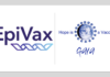 EPIVAX has entered into a partnership with the nonprofit GAIA Vaccine Foundation to create a fund for EpiVax's COVID-19 vaccine trials.