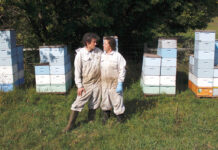 SWEET GIG: Beekeepers James Cook and Samantha Jones stand in front of some of their hives at one of their bee yards near Iola, Wis. The couple has worked with honeybees for several years but started their own business this year.  / AP PHOTO/CARRIE ANTLFINGER