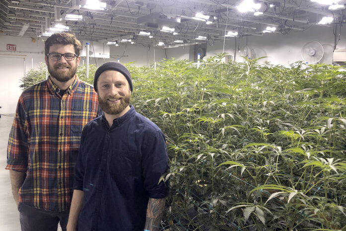 TED GRILLO, left, and Matthew Baryshyan are two cultivation workers at the Ocean State Cultivation Center in Warwick. The United Food and Commercial Workers Local 328 and Ocean State Cultivation Management jointly announced Tuesday that they have agreed to a contract that will make the cultivation center the state's first unionized cannabis business./COURTESY OCEAN STATE CULTIVATION CENTER