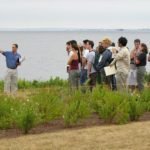 BAYKEEPER John Torgan shows a tour group the coastal buffer zone at the Save the Bay Center in Providence, which also uses a green roof and other runoff-reducing low-impact design (LID) features. /