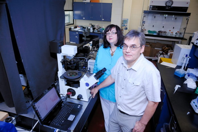 URI BIOPHYSICISTS Yana Reshetnyak, left, and Oleg Andreev have drawn the interest of the federal government and pharmaceutical companies with research into how to deliver medicine more directly to cancer cells. /