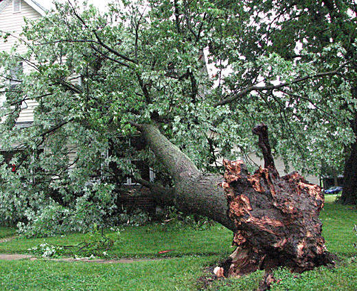 Storm damage mitigation could cost RI munipalities milllions depending on the storm.
