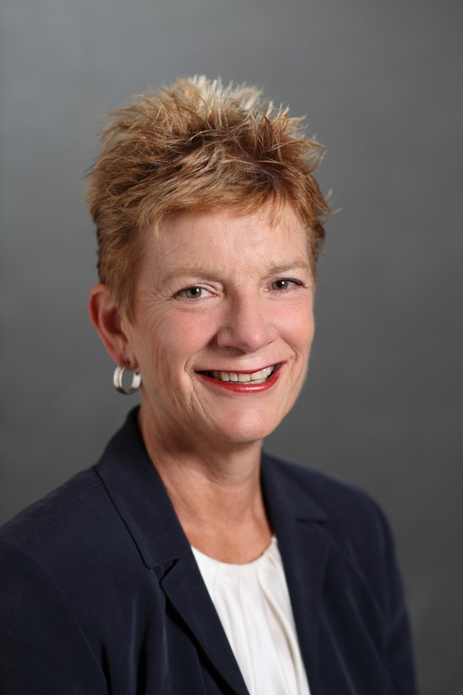 JEAN-ANN MCGRANE is the new CEO of Girl Scouts of Rhode Island. / COURTESY GSRI