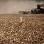 RISK MAY DAMP enthusiasm for investing in farmland even as government subsidies buoy U.S. cropland returns, analysts and farmers say. / BLOOMBERG FILE PHOTO/VICTOR J. BLUE