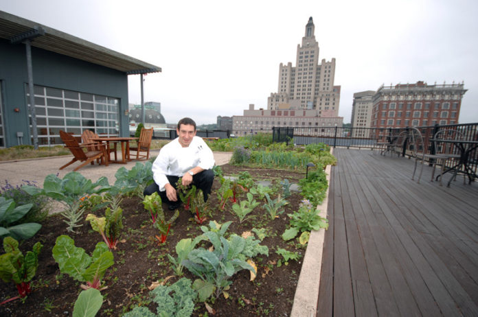 FROM THE GROUND, UP: Matthew Varga, executive chef at Gracie's, tends to the restaurant's rooftop garden on the nearby Peerless Lofts building. / PBN PHOTO/BRIAN MCDONALD