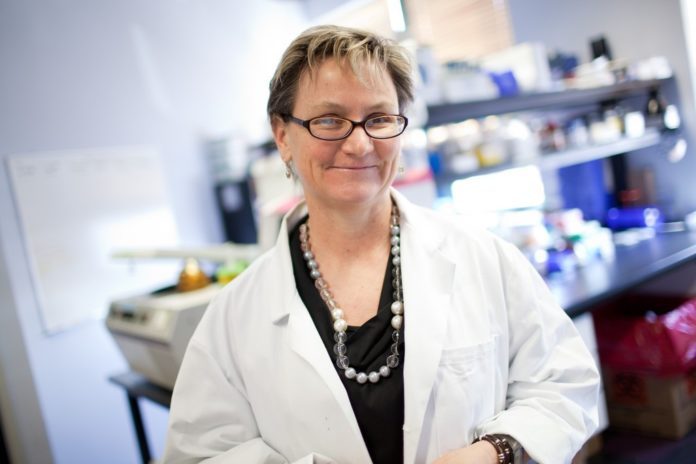 DR. ANNE S. DE GROOT, EpiVax CEO and University of Rhode Island professor, has been named one of the most influential people in the vaccine industry by the national vaccine industry organization VaccineNation. / PBN FILE PHOTO/RUPERT WHITELEY