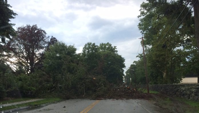 TUESDAY MORNING'S storm knocked down trees all over the region, blocking streets, including here on Warwick Neck Ave. in Warwick in front of the Aldrich Mansion. / PBN FILE PHOTO/ROGER C. BERGENHEIM