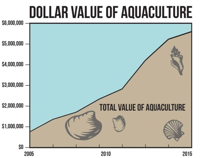 The shellfish figures presented in this report are comprehensive representations. The dominant species in the R.I. aquaculture industry continues to be the Eastern oyster, with 7,547,132 pieces sold in 2015, which is an 18 percent increase from 2013. Hard clam production was a distant second with 47,325 pieces sold. Blue mussel production increased to a harvest of 15,827 pounds. The number of farms active in Rhode Island aquaculture at the end of 2015 was 61, with cultivation of 241.38 acres. / source: 2015 Aquaculture in Rhode Island