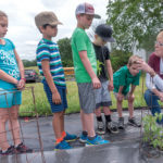 DOWN ON THE FARM: Food insecurity rises in the summer when children don't have access to subsidized school meals. Here, first-graders from Community School learn where food comes from during a visit to the Historic Metcalf-Franklin Farm in Cumberland. / PBN PHOTO/MICHAEL SALERNO