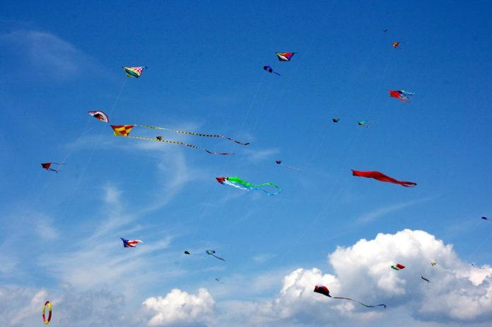 THE 11TH ANNUAL Ralph J. Pecchia Kite Day will be held this weekend at Brenton Point State Park in Newport to aid the Rhode Island chapter of the National Alliance on Mental Illness.