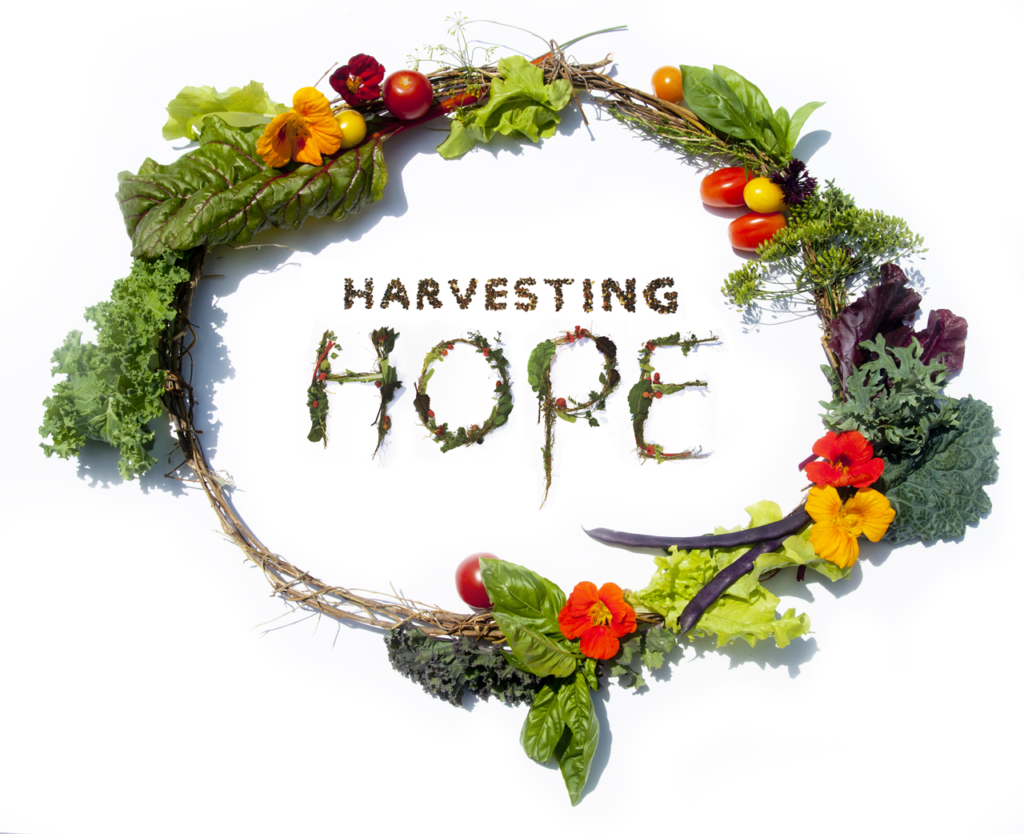 THE SOUTHSIDE COMMUNITY LAND TRUST will celebrate its 36th year with a Harvesting Hope fundraiser on Oct. 3 at the Squantum Association in East Providence. /COURTESY SOUTHSIDE COMMUNITY LAND TRUST