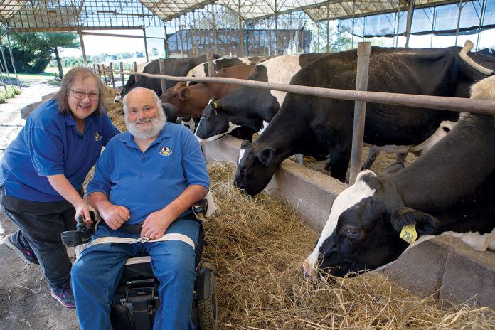 GOT MILK? Louis and Jane Escobar with some of the 185 cows on their Portsmouth farm. Escobar Farm is one of nine ­remaining dairy farms in the state. / PBN PHOTO/ KATE WHITNEY LUCEY