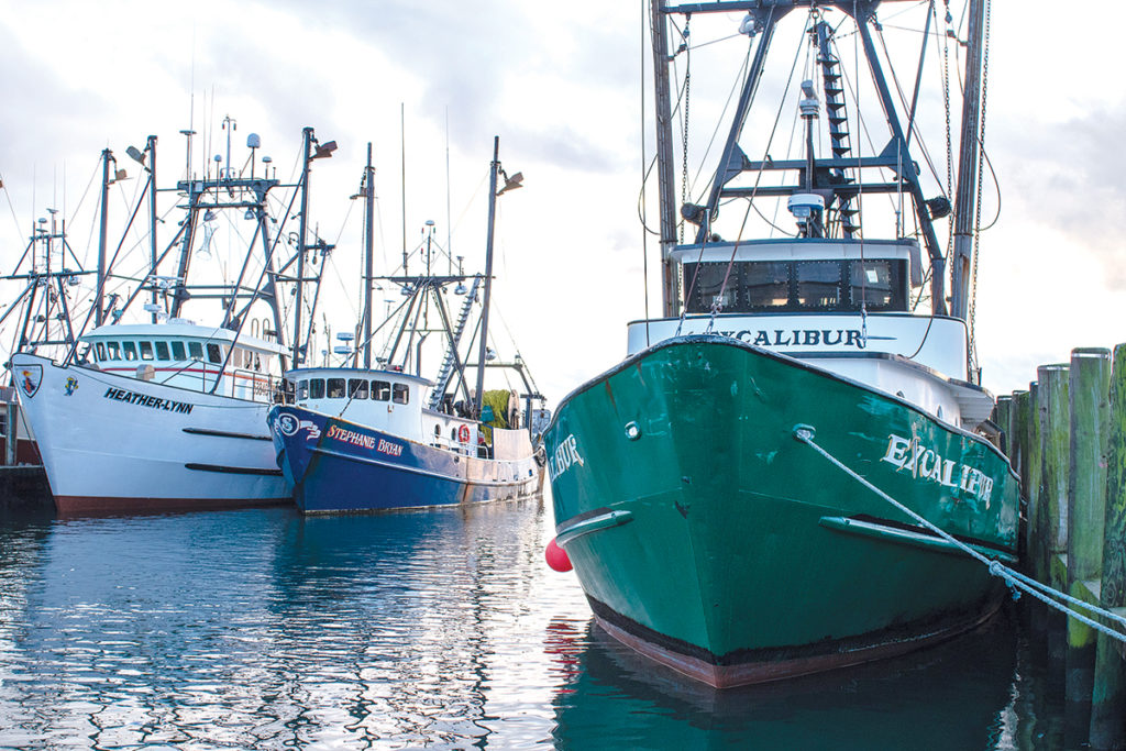 BUREAUCRATIC BUNGLING: Quotas set for summer flounder have caused material harm to Rhode Island fishermen, who may need the state's congressional delegation to help them rework the system. / PBN PHOTO/JOHN LEE