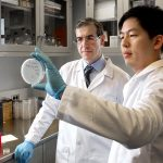 DR. ELEFTHERIOS MYLONAKIS, left, and postdoctoral researcher Kiho Lee study a petri dish containing tiny worms used to test the effectiveness of potential new drugs to fight antibiotic-resistant bacteria. / COURTESY LIFESPAN