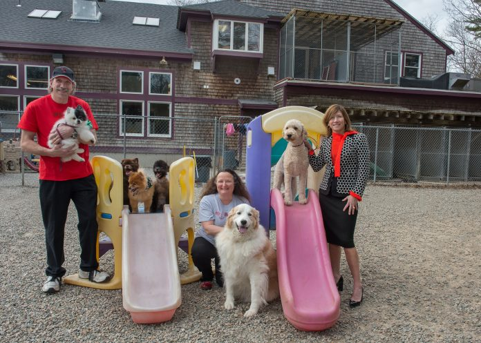CENTREVILLE BANK recently provided $1.6 million to help Steve and Eliza Beringhause purchase the Red Dog Inn and Resort in Mansfield. From left, Steve Beringhause, holding Phantom; on the shorter slide, Conan, Bruno and Neeko; Eliza Beringhouse, holding Everest; Caesar, on the taller slide; and Sara Hiebner, vice president of commercial lending at Centreville Bank. / COURTESY CENTREVILLE BANK