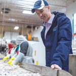 LEAN SCENE: Town Dock President and CEO Ryan Clark oversees the inspection process of the day's squid landing. Town Dock is Rhode Island's largest calamari processor and the nation's largest supplier to the domestic market. / PBN PHOTO/RUPERT WHITELEY