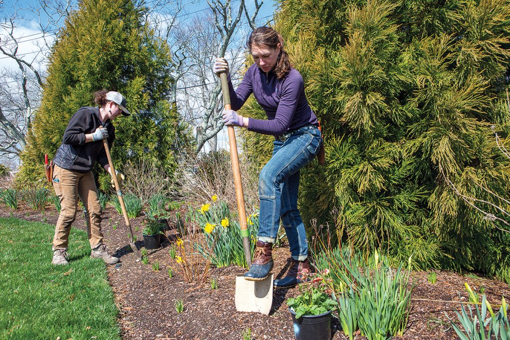 PERENNIAL WORK: Meg Gallagher, right, owner of Wild & Scenic in South Kingstown, and Suzannah MacDonald, fine gardener, plant ­columbine and geum in the perennial bed at a client's home. / PBN PHOTO/KATE WHITNEY LUCEY