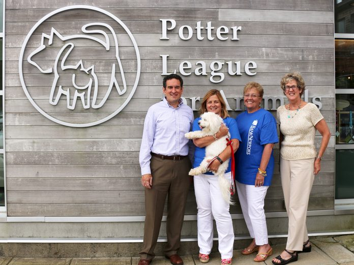 CASUAL CAUSE: BankNewport employees recently presented donations totaling $500 to the Potter League for Animals. / COURTESY BANKNEWPORT