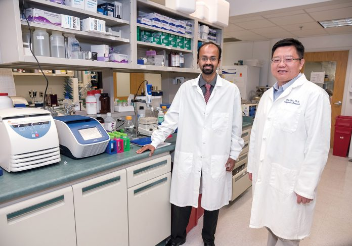 DISCOVERY: Life­span researchers Chathuraka T. Jayasuriya, left, and Qian Chen, both of Rhode Island Hospital and the Warren Alpert Medical School of Brown University, have discovered aberrant stem cells that may play a role in osteoarthritis. / PBN PHOTO/