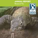 ELSIE THE KOMODO DRAGON, a recent acquisition for the Roger Williams Park Zoo, graces the cover of the nonproft's 2017 annual report released Tuesday. / COURTESY ROGER WILLIAMS PARK ZOO