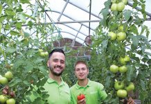 INNOVATIVE STARTUP: Johnson & Wales University graduates Brandon Monti, left, and Patrick Straus co-founded FreshConn, a farmers market delivery service in Providence, to innovate the way produce is sold, increase sales to artisan producers and decrease food insecurity. / PBN FILE PHOTO/KATE WHITNEY LUCEY