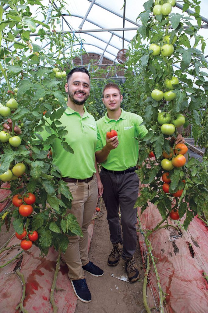 INNOVATIVE STARTUP: Johnson & Wales University graduates Brandon Monti, left, and Patrick Straus co-founded FreshConn, a farmers market delivery service in Providence, to innovate the way produce is sold, increase sales to artisan producers and decrease food insecurity.