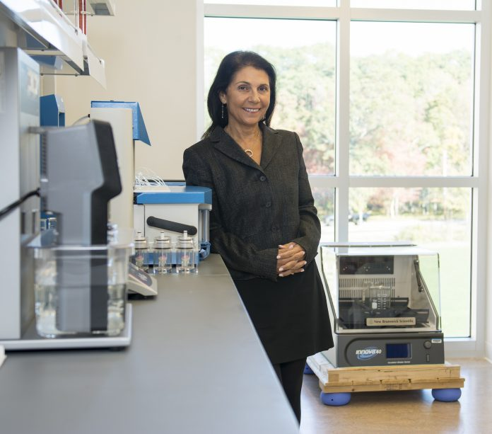 THE GEORGE & ANNE Ryan Institute for Neuroscience researchers will investigate reduction of brain blood vessel inflammation in fighting Alzheimer's disease as part of the $1.3 million, University of Rhode Island-sponsored, BEACON study. Above, Paula Grammas, executive director of the Ryan Institute. / COURTESY NORA LEWIS