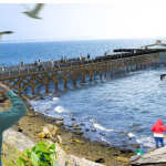 A $1.8 MILLION fishing pier will be built at Rocky Point State Park. / COURTESY R.I. DEPARTMENT OF ENVIRONMENTAL MANAGEMENT