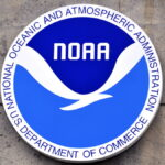 "NOAA HAS SETTLED its civil case against Carlos Rafael, known as the ""Codfather,"" for $3 million and requirements that Rafael relinquish his permits and divest from his fishing assets. NOAA said the settlement will speed up the return of Rafael's assets to productive use. / BLOOMBERG FILE PHOTO/MARK ELIAS"