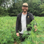 HEMP FARMER: Mike Simpson is a co-founder and the CEO of Lovewell Farms, one of Rhode Island's first industrial hemp farms, with about 4,000 hemp plants growing on slightly less than 2 acres split between fields in Exeter and Richmond. / Array